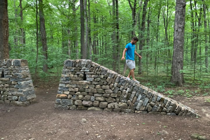 New art installation adorns Angell Woods in Beaconsfield
